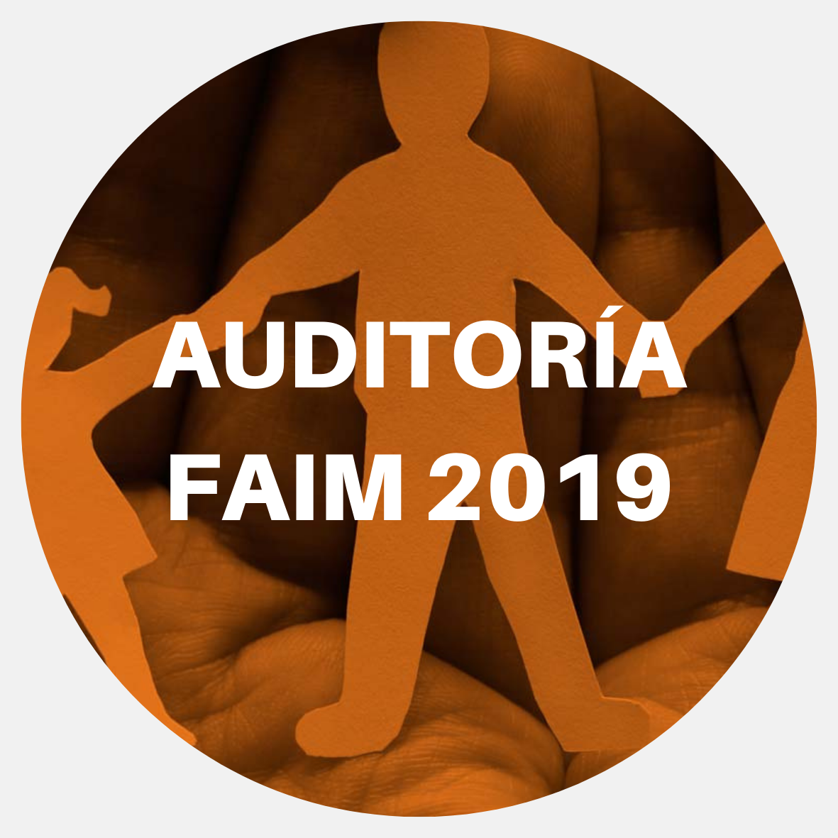 auditoria FAIM 2019